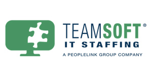 TeamSoft logo